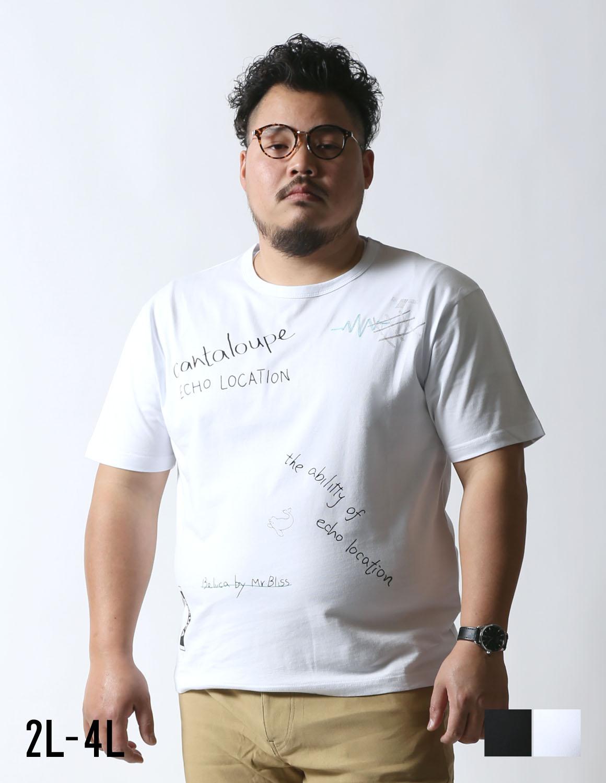 【大きいサイズ メンズ】Beluca(ベルーカ)エコーロケーション刺 半袖Tシャツ 2L/3L/4L