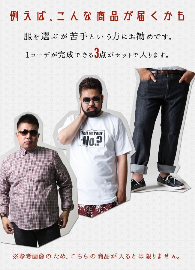 【大きいサイズ】祝引っ越し3点入り福袋(梅)[2L/3L/4L]