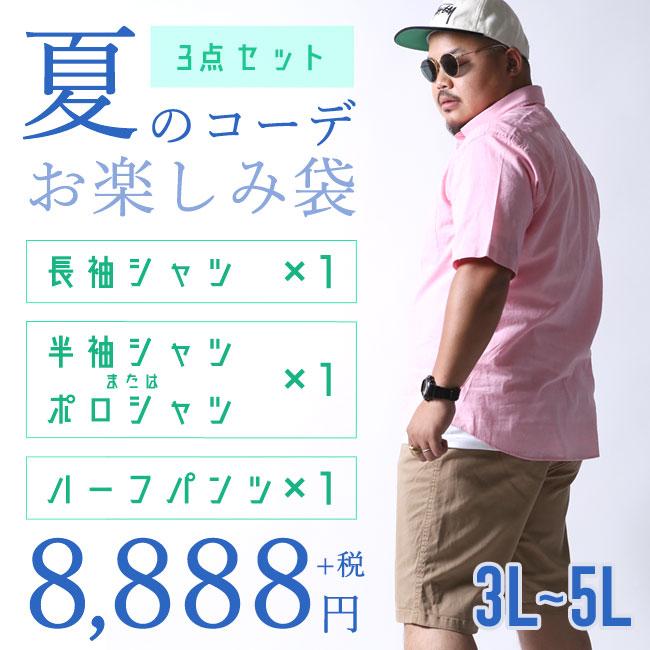 3タイプのシャツ3点SETお楽しみ袋[2L/3L/4L]