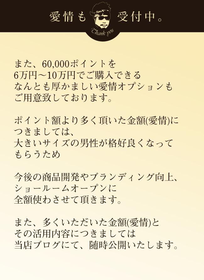 【期間限定】プレミアムポイント(6万円分)